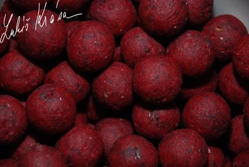 LK Baits Euro Economic Boilies Spice Shrimp 5kg, 24mm